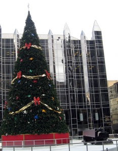 PPG ICE RINK
