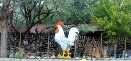SAME ROOSTER FOUND IN SEDONA, ARIZONA